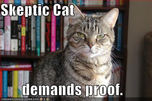 Meme: Skeptic Cat demands proof